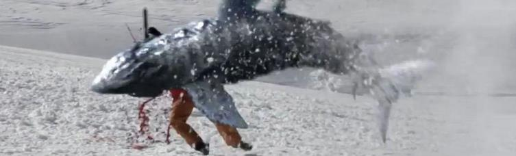 4 -- Avalanche Sharks